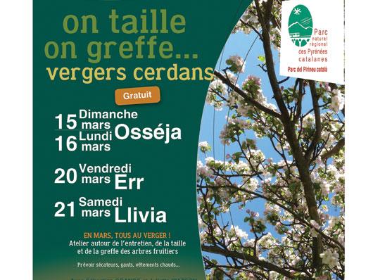 Jornades formatives: taller d'arbres fruiters